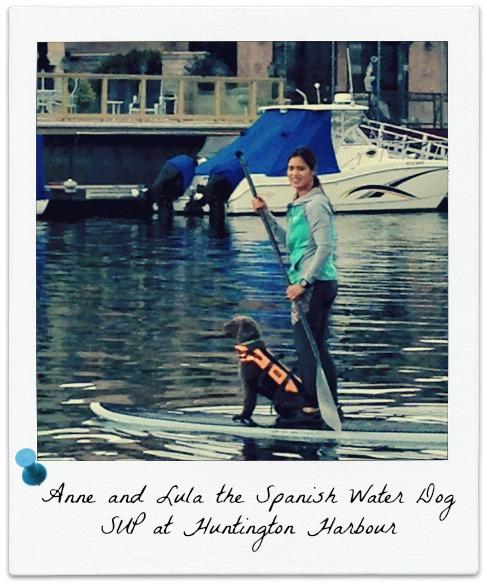 SUP | Woman | Dog | Huntington Harbour | Surf City Family