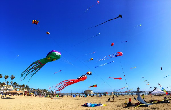 Kite Party | Larry Tenney