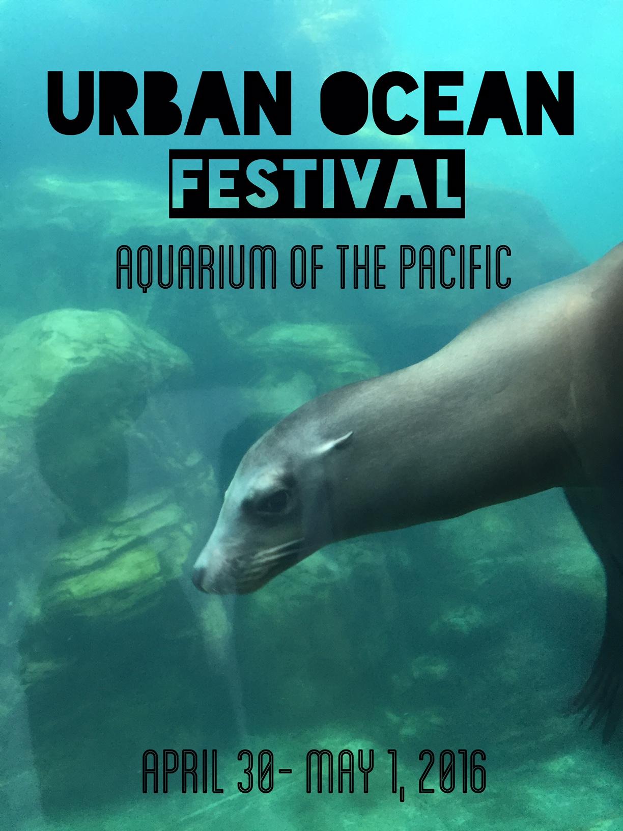 Urban Ocean Festival | Sea Lion image Marcie Taylor
