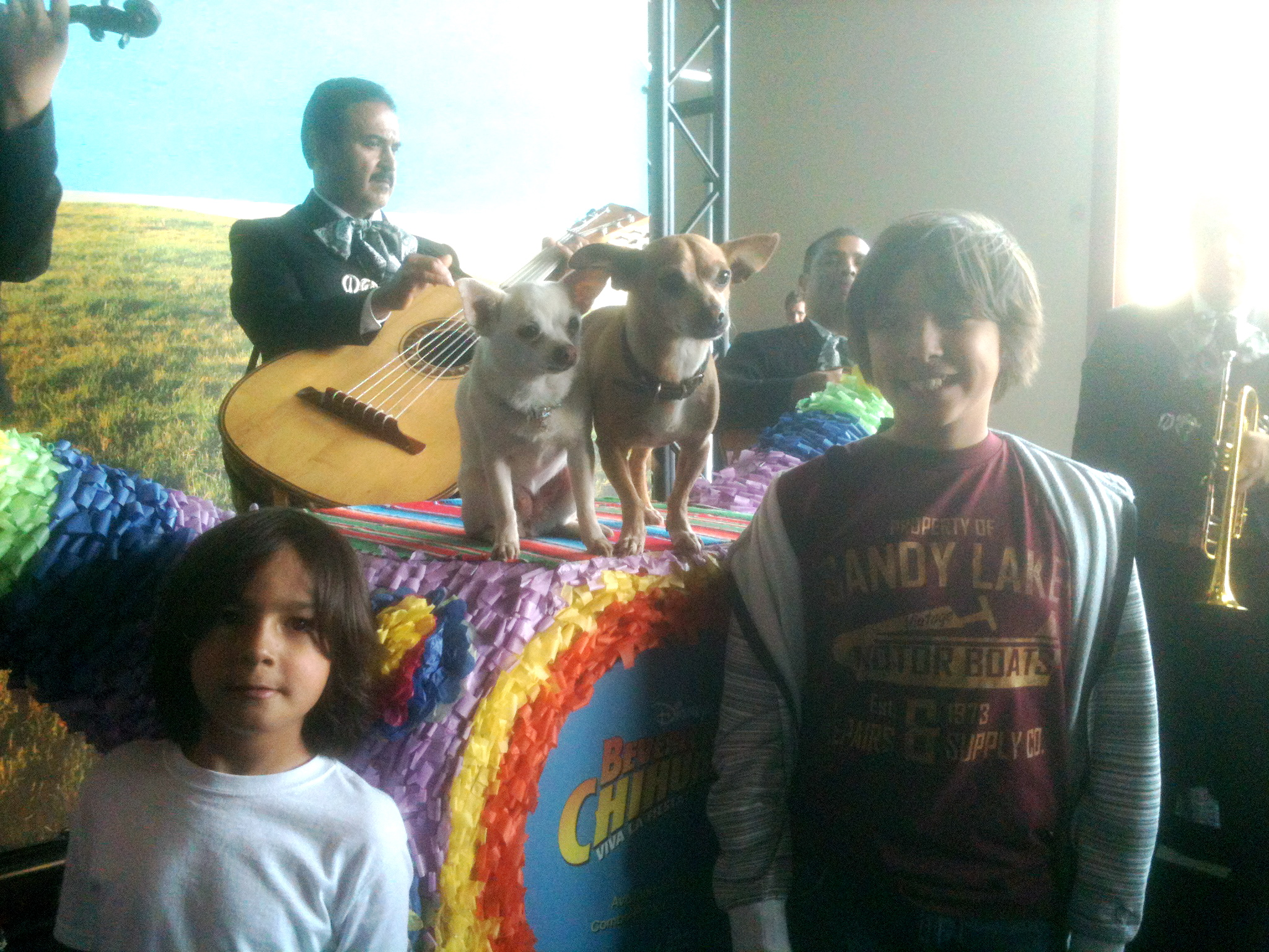 My boys met the stars of Beverly Hills Chihuahua
