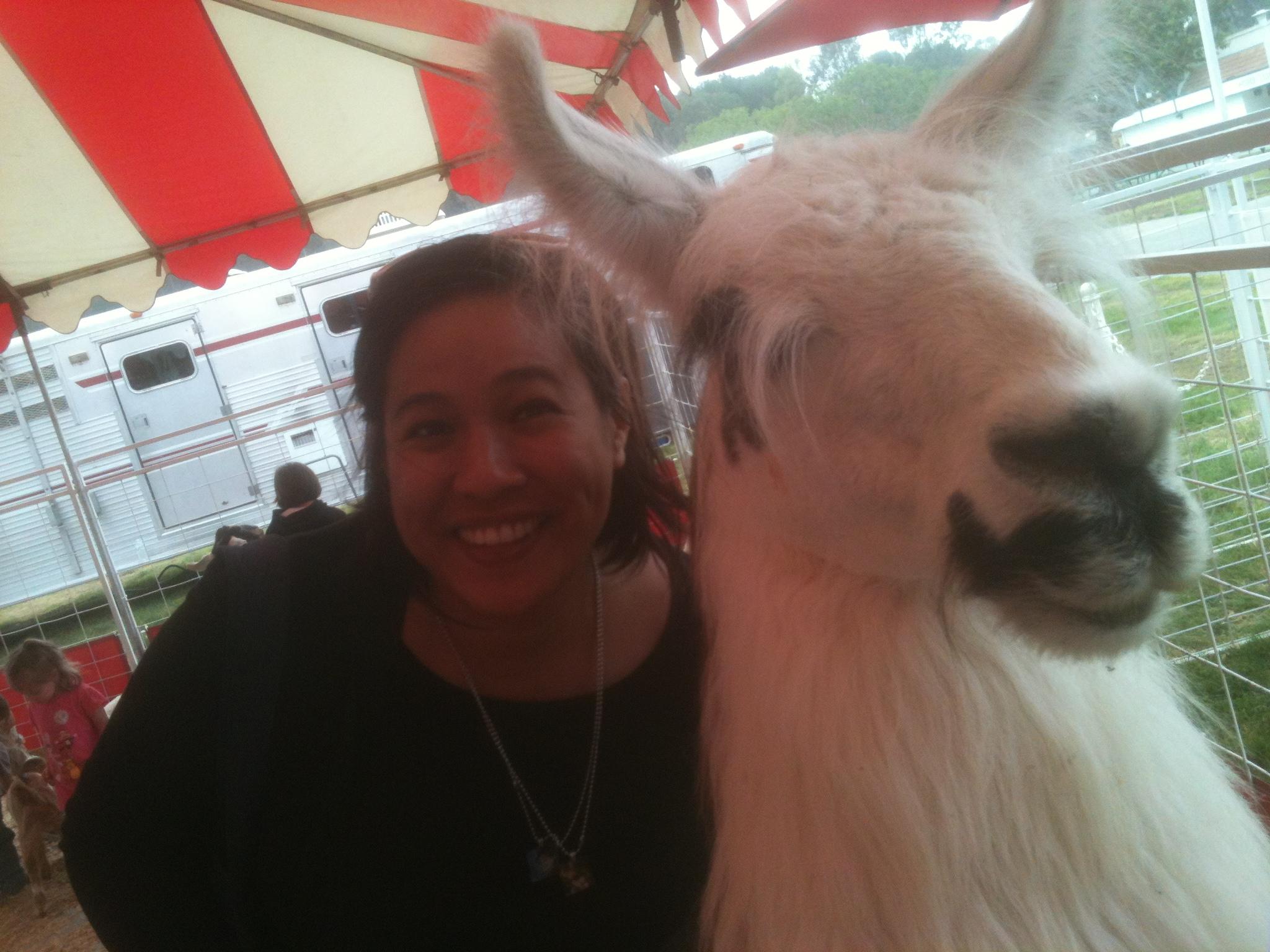 And I met a llama