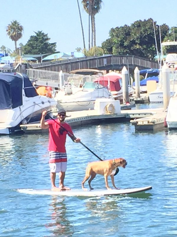 Pirate Coast Paddle Co. Sup with your Pup