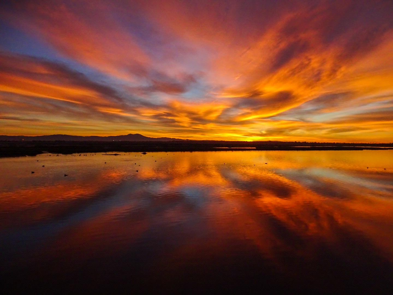 Sunrise, Bolsa Chica, Steph White
