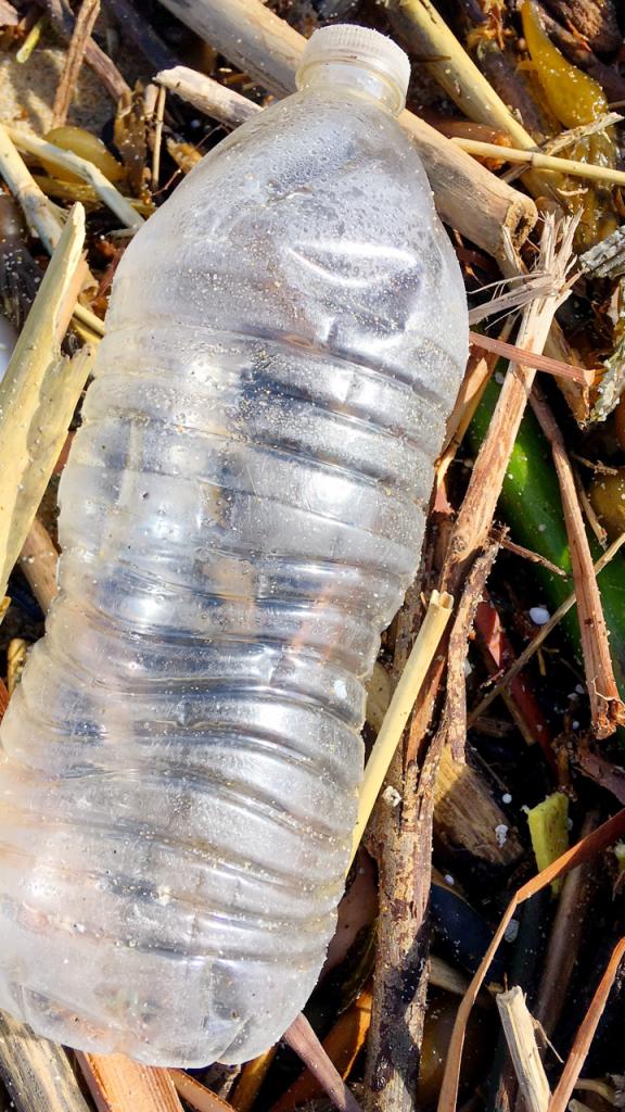 Plastic bottle by Larry Tenney