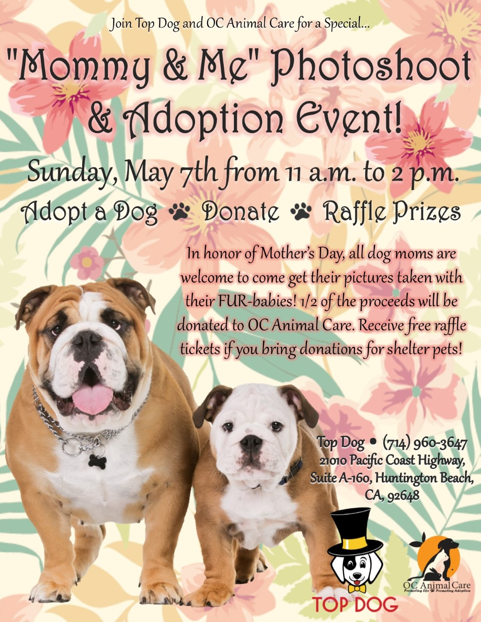 Dog Adoption Events Southern California
