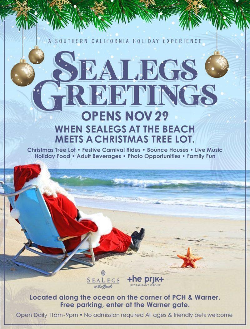 Christmas Beach Holidays 2020 Sealegs at the Beach: Oceanfront Holiday Experience November 29