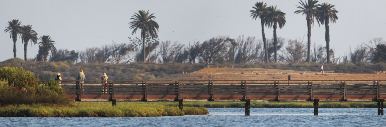 Protecting Nature in Huntington Beach: The Bolsa Chica Land Trust